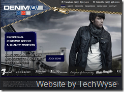 Denim101 Website by TechWyse